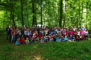 Photo école forêt